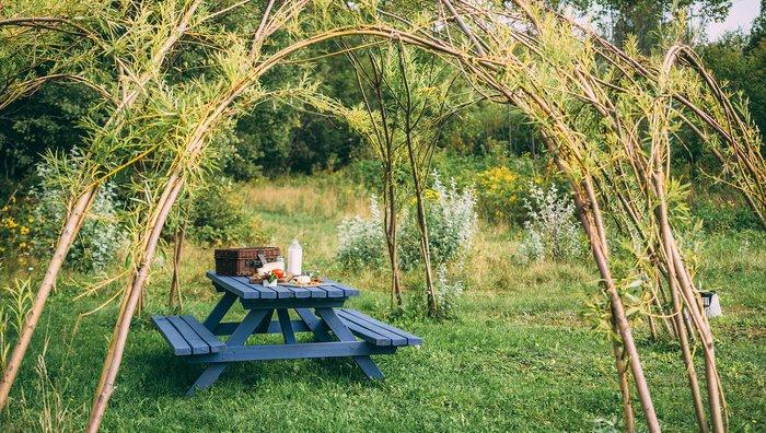 rencontrez aadje de la fromagerie fermi re cassis et m lisse. Black Bedroom Furniture Sets. Home Design Ideas